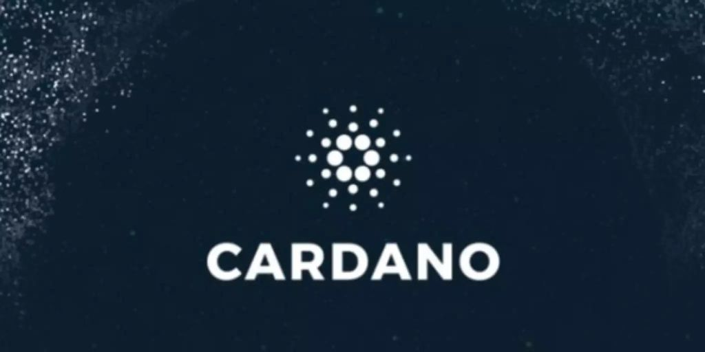 Cardano ist im Höhenflug - Nau.ch