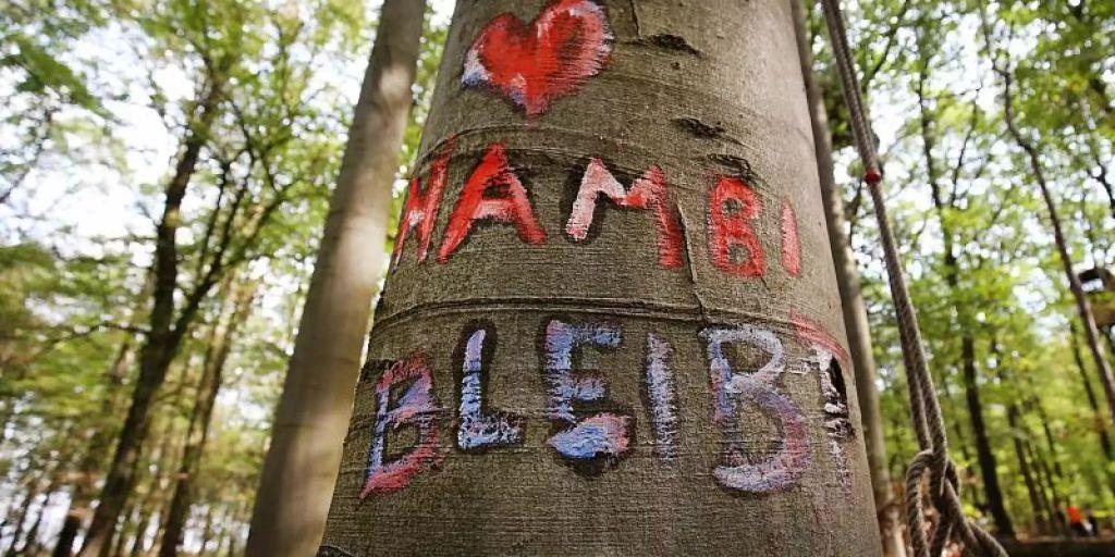 Hambacher Forst Heute